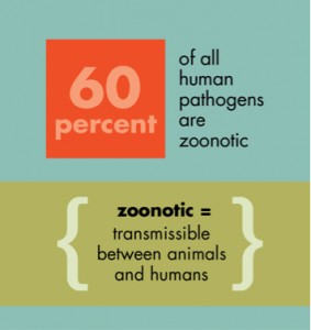 Zoonotic pathogens make up a majority of all human diseases